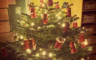 Advents- und Weihnachtsstimmung bei den ELMARs der Klasse 3a🎄🕯