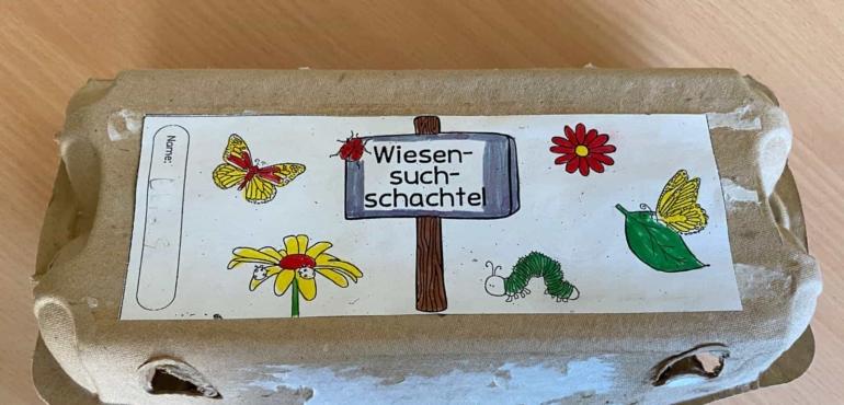"""Sachunterrrichtsthema """"Die Wiese"""" – Die ELMARs der Klasse 3A präsentieren ihre Wiesensuchschachteln 🌱☘️🌿🌼🌾"""